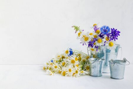 Home interior and garden concept with summer flowers in a metal bucket on a light background