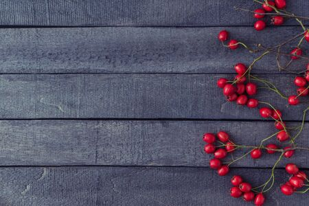 Branches with red berries on a dark wooden background. Flat lay, top view Stock Photo