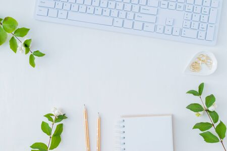 Flat lay desk and branch with green leaves on a white background Stock Photo