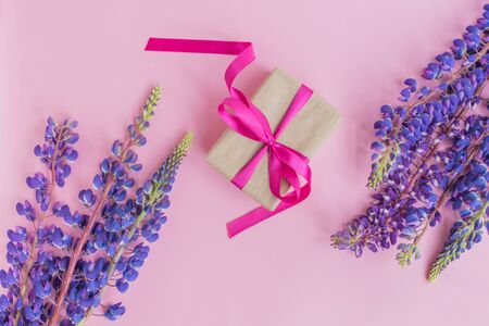 Gift box with lupine flower on a pink background