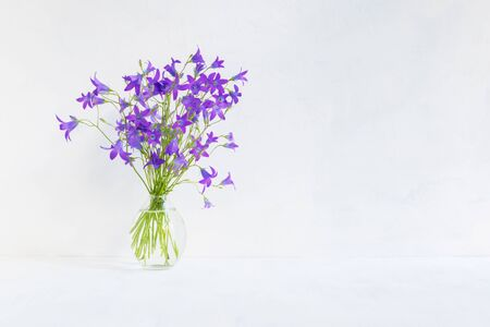 Summer flowers in a vase on a light background. Interior decor Stock fotó