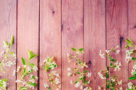Flat lay composition with spring white flowers on a wooden background 版權商用圖片