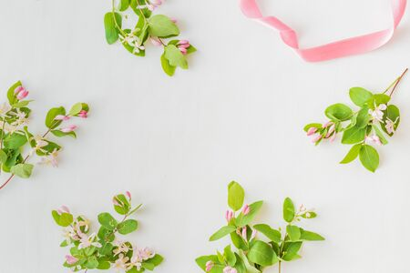 Flat lay pattern with branches and green leaves on a white background 版權商用圖片