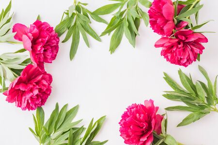 Flat lay composition with red peonies and green leaves on a white background 免版税图像