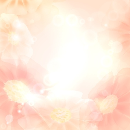 Sunny background with flowers