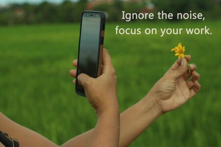 Inspirational motivational quote - Ignore the noise, focus on your work. With one human hand holds little yellow daisy flowers and the other hand holds a smartphone. Hand phone photographer in concept. Fresh and green rural view blurry background.