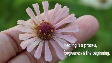 Inspirierende Worte - Heilung ist ein Prozess. Vergebung ist der Anfang. Mit Zinnia-Blume in der Hand.