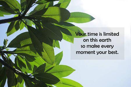 Inspirierendes Motivationszitat - Ihre Zeit ist auf dieser Erde begrenzt, also machen Sie jeden Moment zu Ihrem Besten. Mit Natur verlässt Rahmen und blauen Himmelshintergrund obere hohe Ansicht. Worte des Lebensweisheitskonzepts. Standard-Bild