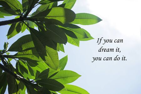 Inspirational motivational quote-If you can dream it, you can do it. With frangipani tree and leaves top high view and blue sky background. Words of wisdom with nature concept.