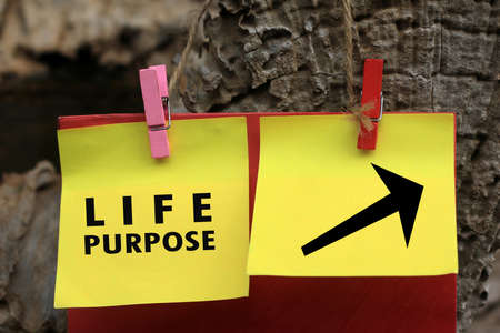 Life purpose with direction sign message on yellow paper notes hanging on wooden wall. Find your life purpose concept.  Black narrow sign to the right side concept to find your life purpose.