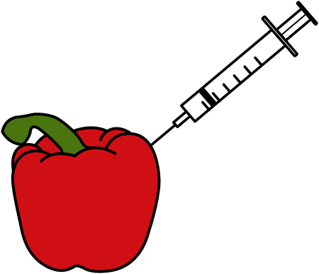 red pepper: Pesticides - An illustration of a red pepper which has a syringe being put into it Stock Photo