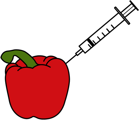 gm: An illustration of a red pepper which has a syringe being put into it