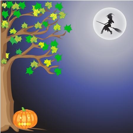 beldam: Halloween at night