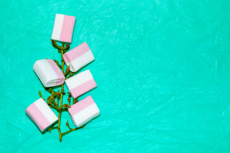 A vine branch that has marshmallows instead of berries, on a turquoise background, humor. Template, space for text.
