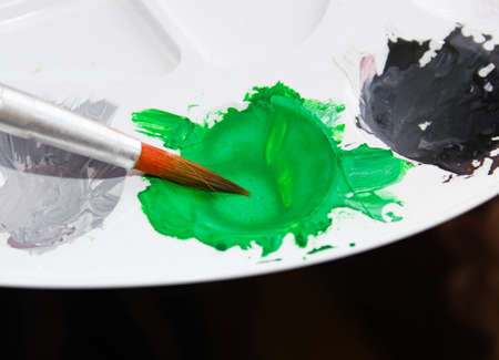 The art brush is dipped in green paint on the palette. Selective shot.