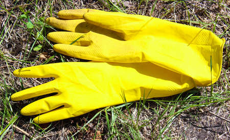 Yellow rubber gardening gloves are lying on the grass. Tools for working in the garden, close-up.