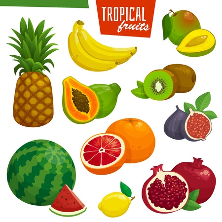 Tropical fruits collection. Cartoon illustration. Banana pineapple kiwi pomegranate and grapefruit. Ilustração