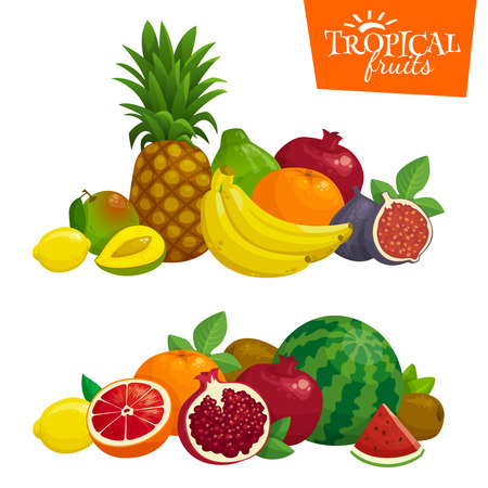 Exotic tropical fruits composition. Cartoon illustration.