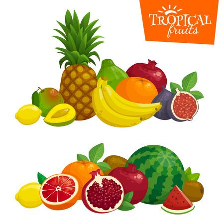 Exotische tropische vruchten samenstelling. illustratie van het beeldverhaal.