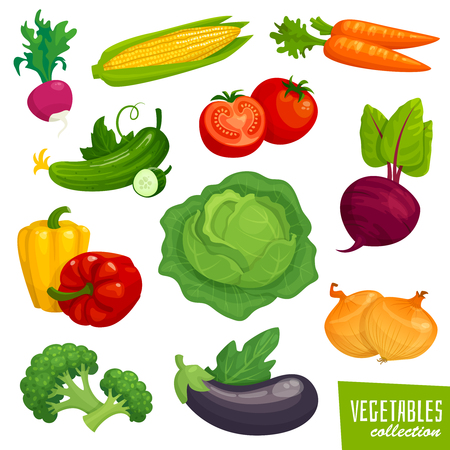 Fresh healthy vegetables collection. Cartoon  illustration Çizim