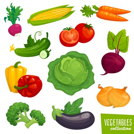 Verse gezonde groenten collectie. illustratie van het beeldverhaal Stock Illustratie