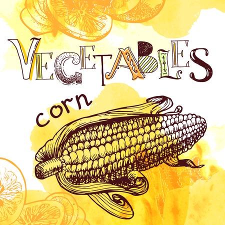 gm: vector vegetable background Illustration