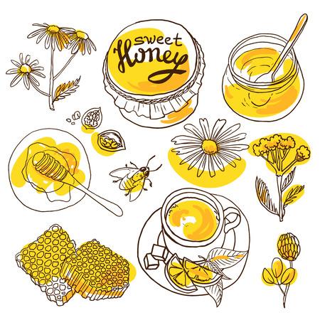 sweet honey Vettoriali