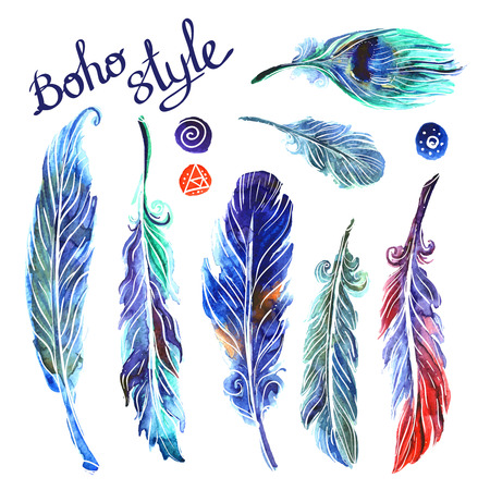 watercolor illustration feathers