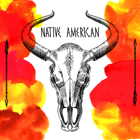 bull head: native american Illustration