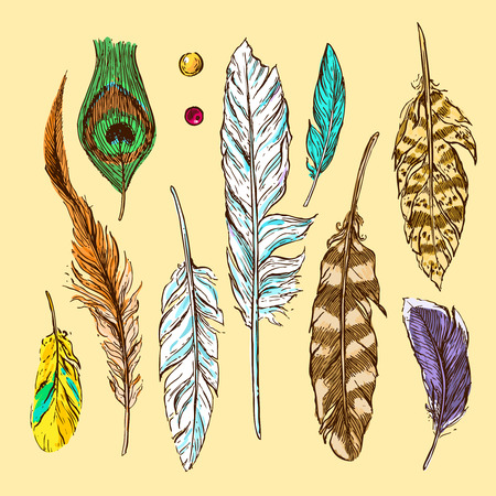 Beautiful hand drawn sketch feather for your design