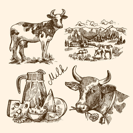 milker: Beautiful hand drawn sketch illustration milk product for your design