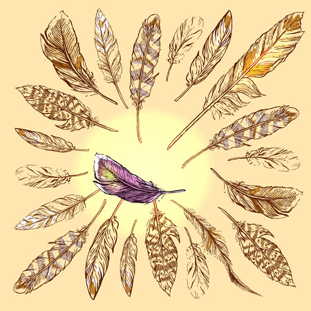 Beautiful hand drawn sketch  illustration feather for your design