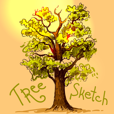 grass weave: Beautiful hand drawn sketch tree for your design Illustration