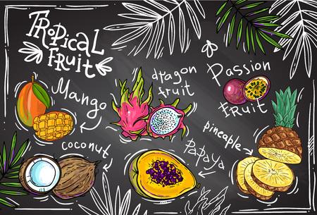 fruta tropical: Dibujado a mano hermoso frutas tropicales para su diseño