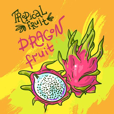 dainty: Beautiful hand drwan fruit  for your design Illustration