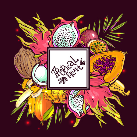 tropical fruits: Beautiful hand drawn vector tropical fruits for your design