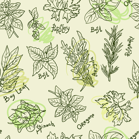 Seamless pattern with beautiful hand drawn vector illustration of culinary herbs