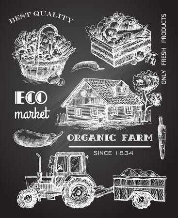 illustration eco farm. Sketch style.