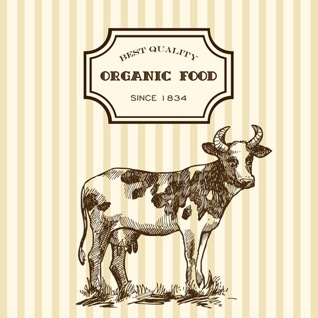 milker: Beautiful hand drawn sketch illustration milk product for your design. Organic milk. Illustration