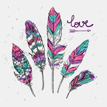 Beautiful hand drawn vector illustration feathers. Sketch feathers.