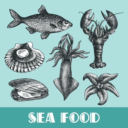 Schöne Hand gezeichnet Vektor-Illustration Meeresfrüchte. Sea Food-Stil Gravur. Meeresfrüchte-Menü. Standard-Bild - 56629388