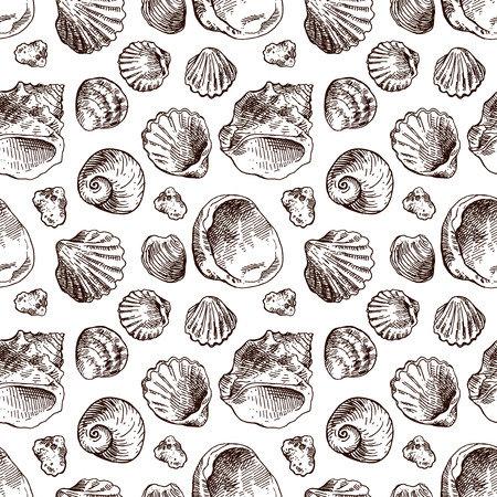 sea shell: Hand drawn sea shell. Set of sketches shells. Shell illustration for your design. Seamless pattern sea shell.