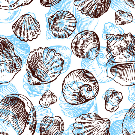 shell pattern: Hand drawn sea shell. Set of  sketches shells. Shell illustration for your design. Seamless pattern sea shell.