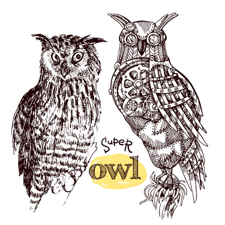 linework: Vector hand drawn mechanical owls. Mechanical sketch animal. Steampunk style owl. Natural owl sketch style.