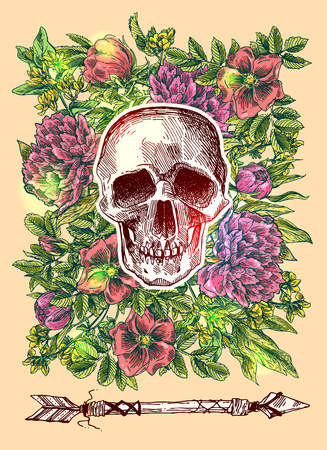 macabre: Beautiful hand drawn sketch illustration the skull. Boho style print for T-shirt.