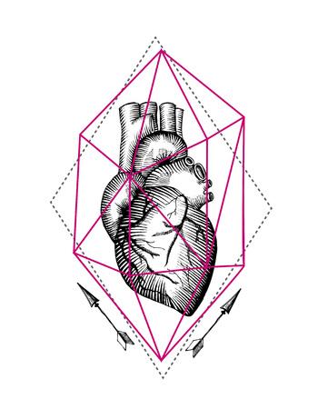 tatto: Sketch vector illustration anatomical heart. Vector illustration boho style. Use for tatto, poster,  T-shirt.