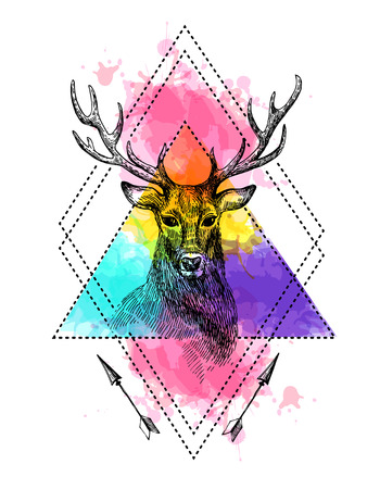 Hand drawn illustration deer. Sketch of deer. Tattoo style deer on the watercolor background.