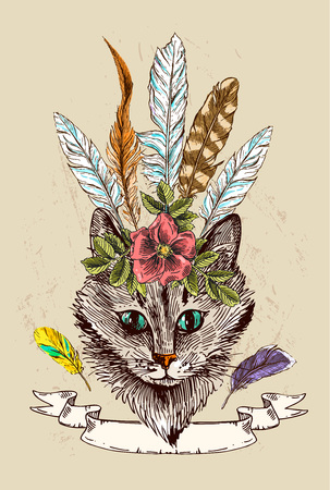 moggie: hand drawn illustration head of cat