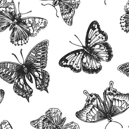 entomological: Beautiful hand drawn vector illustration sketching of butterflies. Boho style seamless pattern. Use for postcards, print for t-shirts, posters, wedding invitation, tissue, linens