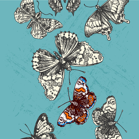 entomological: Beautiful hand drawn vector illustration sketching of butterflies. Boho style drawing. Use for postcards, print for t-shirts, posters, wedding invitation, tissue, linens